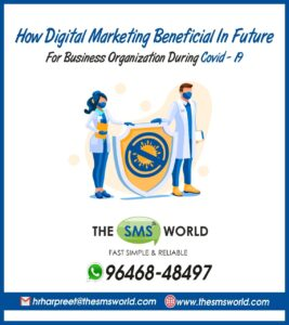 Digital Marketing Services - The SMS World